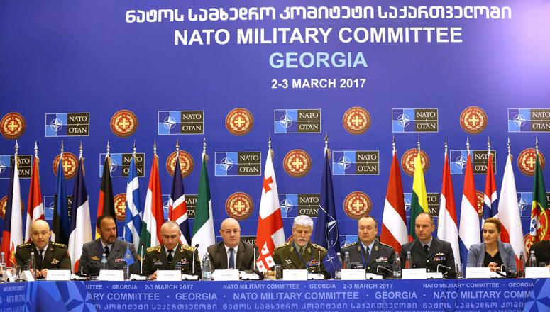 ناتو در گرجستان