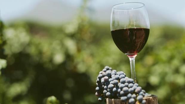 شراب قرمز گرجستان