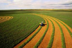 اجاره زمین کشاورزی در گرجستان