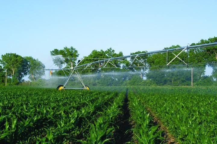 فاکتورهای کلیدی کشاورزی در گرجستان