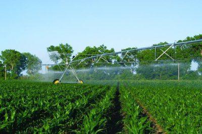 کشاورزی در گرجستان و بررسی چالش های موجود